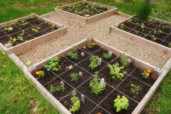 Raised Garden Bed Grid
