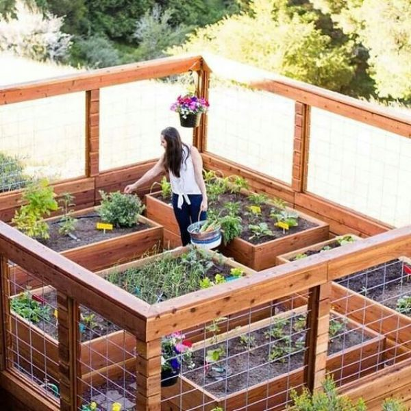 The Raised Garden Bed Guide: Design Ideas, Kits, Plans & More