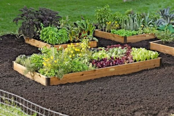 Raised Garden Bed Modern