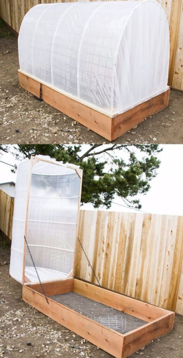 Vegetable Raised Garden Bed