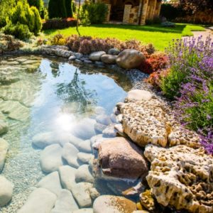 Beautiful Landscaping Rocks Ideas