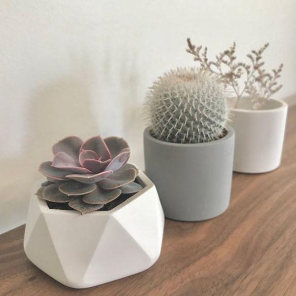 Plant Pots Drainage