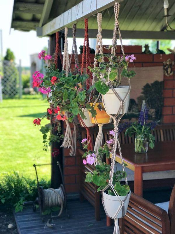 Plant Pots Modern