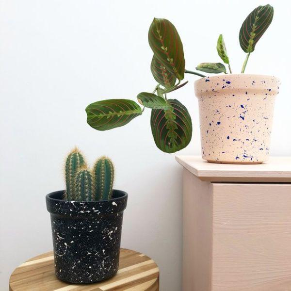 Plant Pots Painting