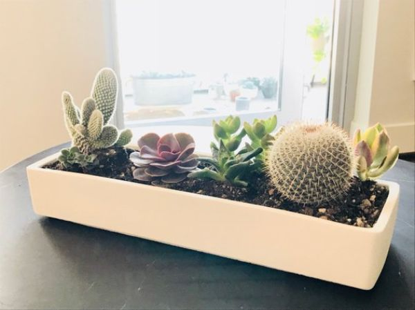 Plant Pots Rectangular