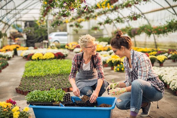 Planted Well Authors: Joyce Adams and Nancy Drews