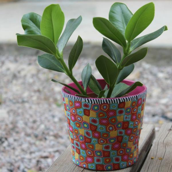 Plant Pots For Cheap