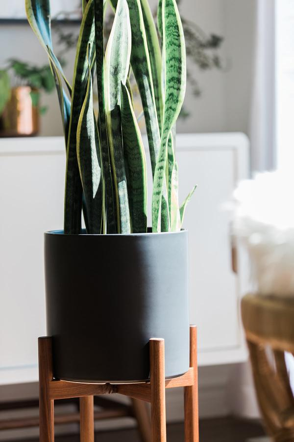 Plant Pots With Stand