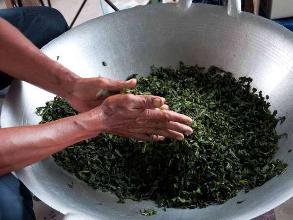 Rolling Tea Leaves