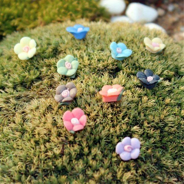 Fairy Garden Flowers