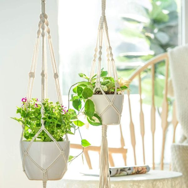 hanging plant stand indoor