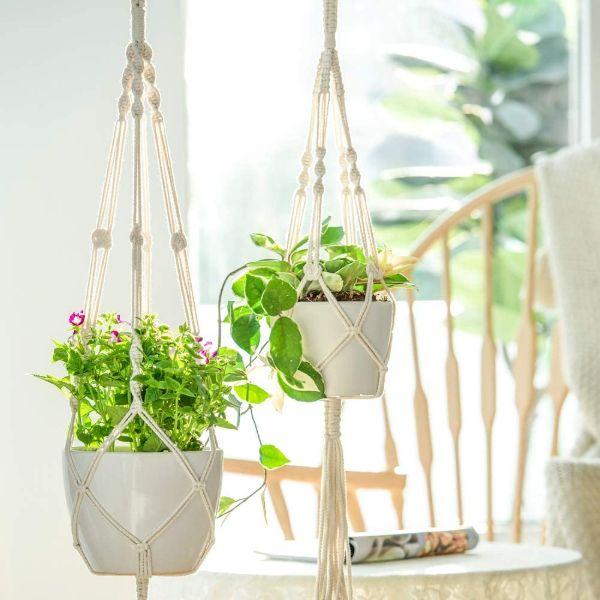 hanging plant stand indoor