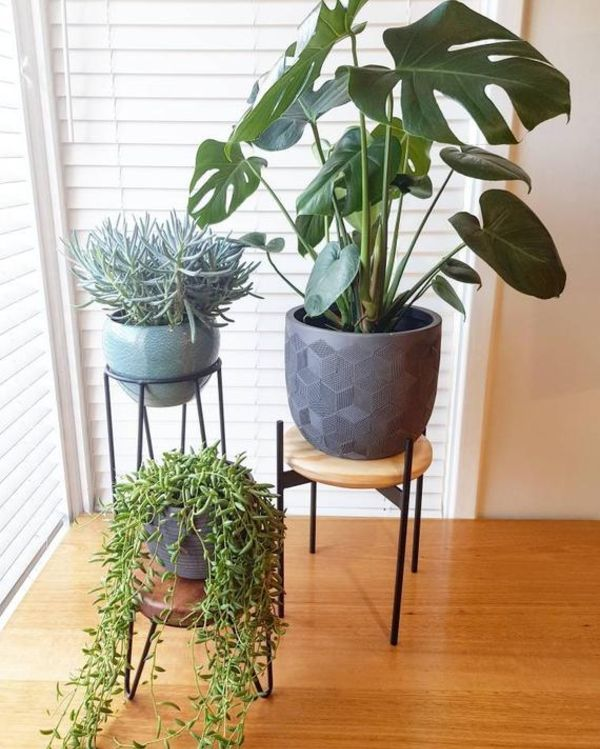Plant Stand Black