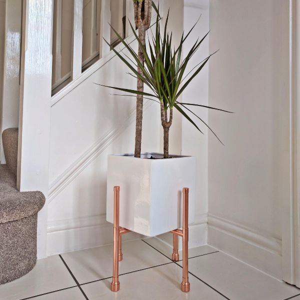 plant stand indoor modern