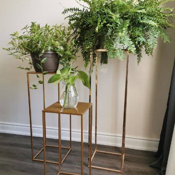 Brass Plant Stand on Castors