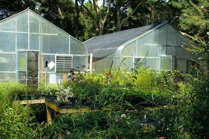 ecofriendly greenhouse