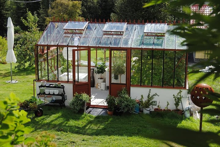 greenhouse plants dont need pesticides