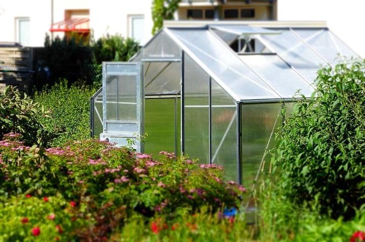 mini greenhouse in a small garden