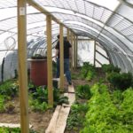 purpose of having a greenhouse