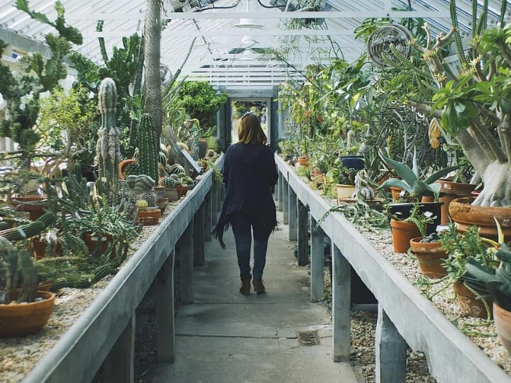 walking on a greenhouse