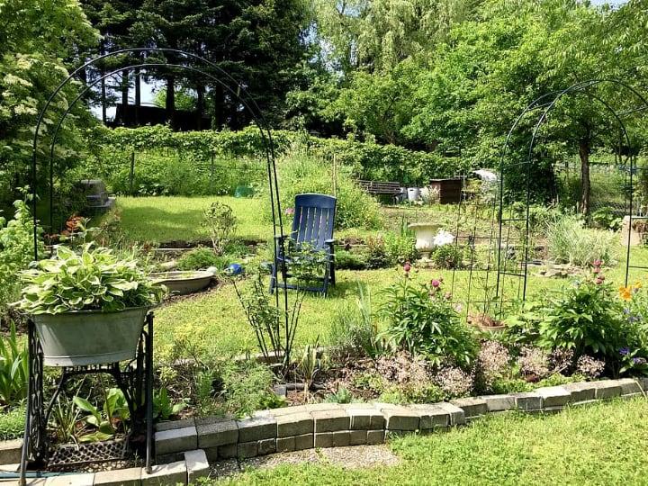 garden landspace design