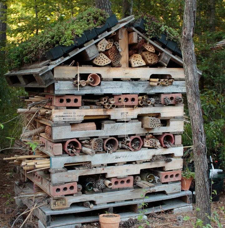 garden bees house