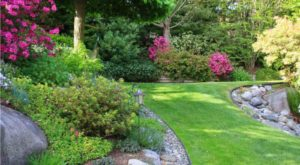 gardening design guide