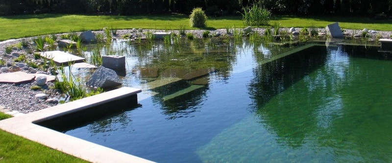 natural swimming pools landscaping