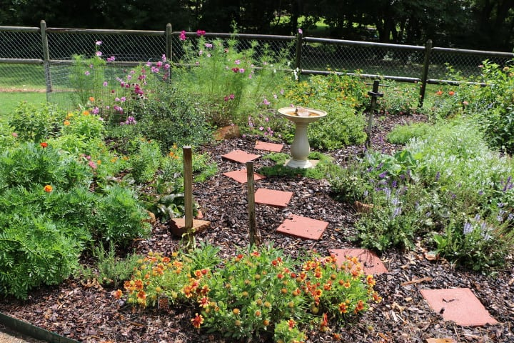 small bee garden