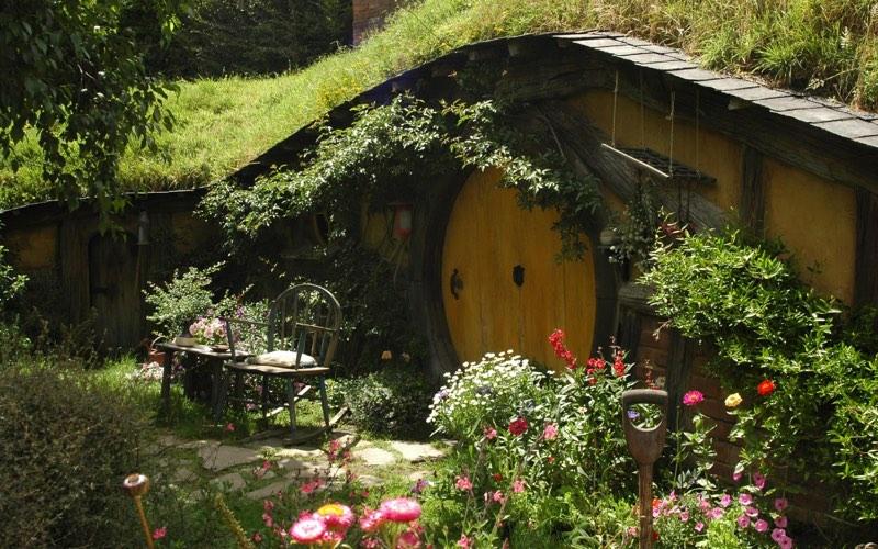 backyards gardens image