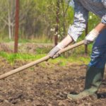 farmer using a garden hoe