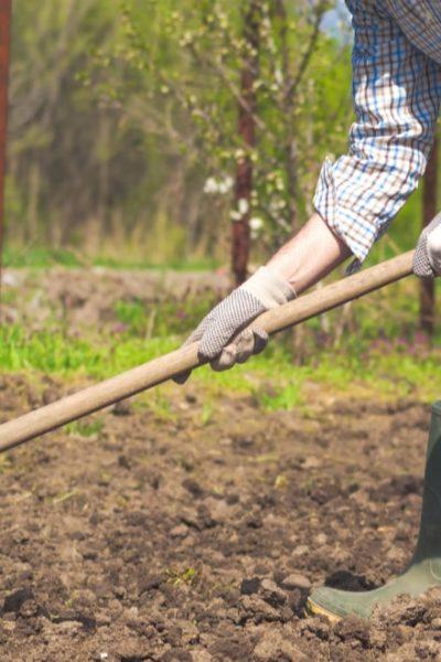 farmer using a garden hoe