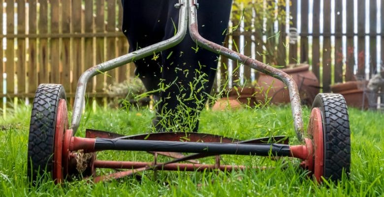 push mower in action on the garden