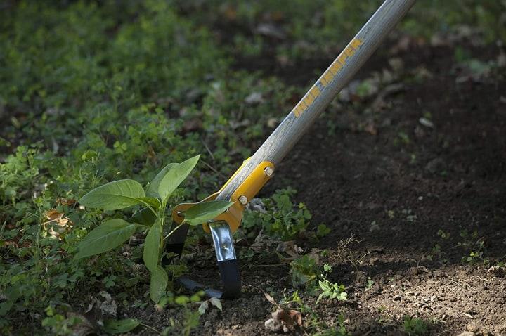 stirrup gardening hoe