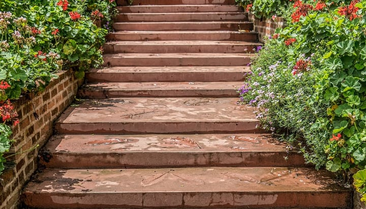 stone steps in the backyard garden