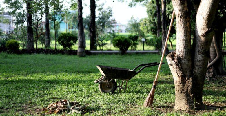 wheelbarrow waiting to tow away dried leaves