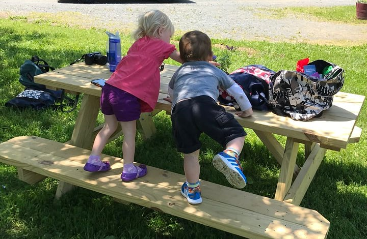picnic time with family