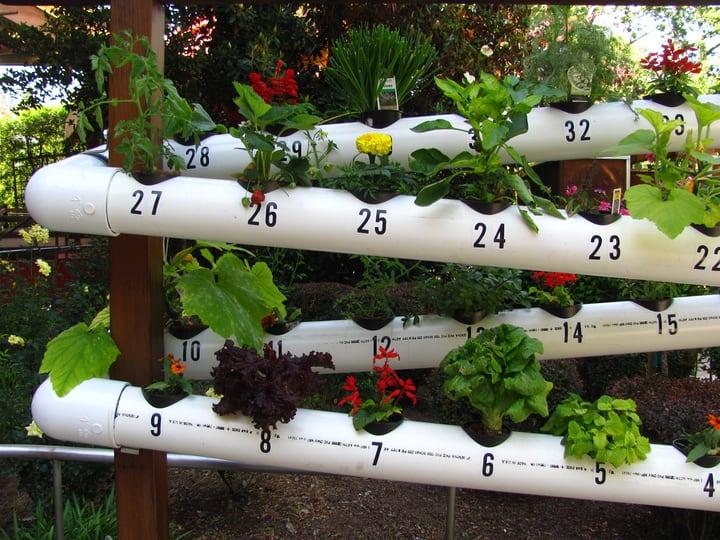 using rain water for hydroponics