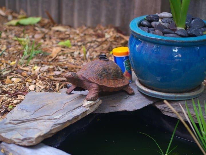 using rain water on mini pond