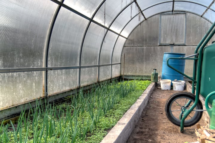 dome arched greenhouse