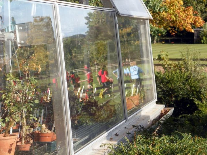 greenhouse with good drainage