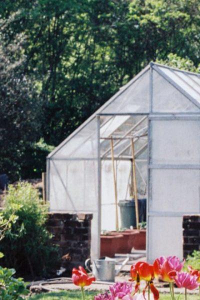mini green house at home