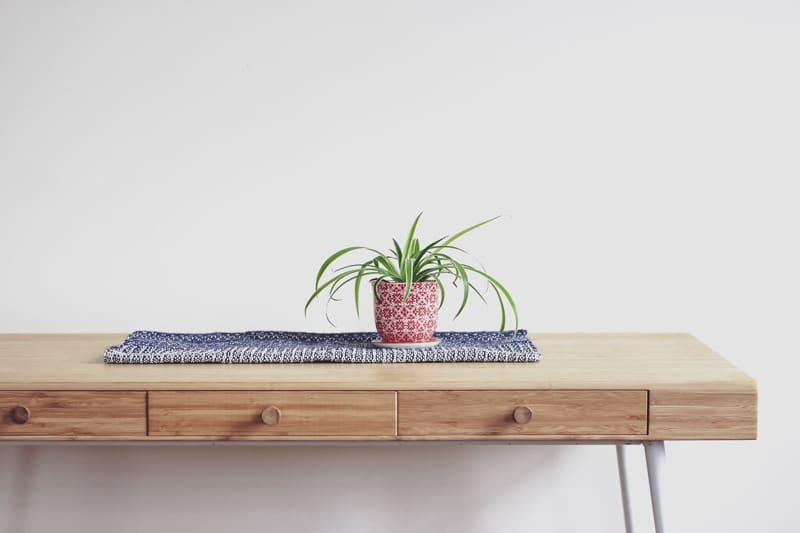plants for dark bedroom