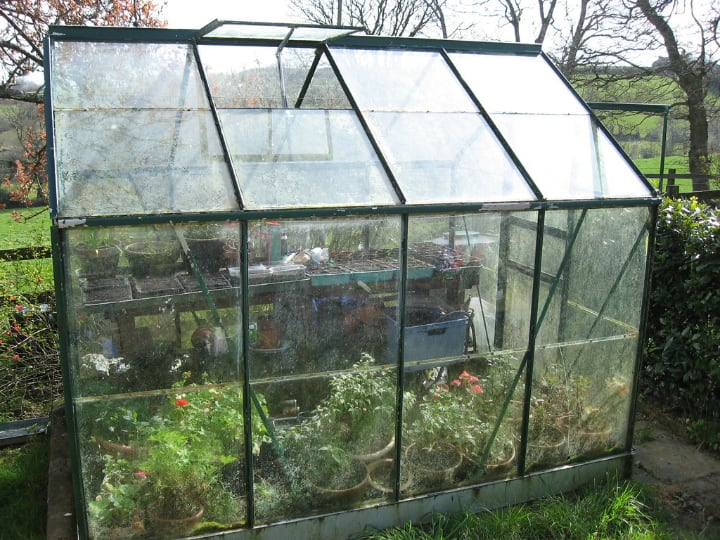 small greenhouse in a small garden