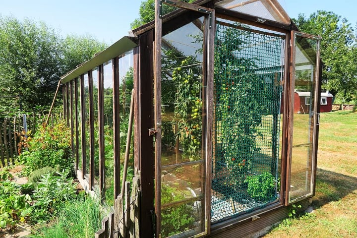 small wooden greenhouse