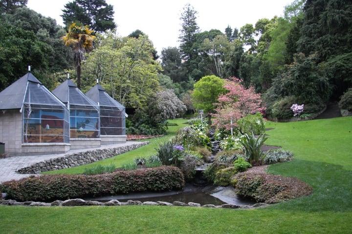 napier botanic garden