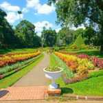 royal botanic garden