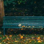dark green garden bench