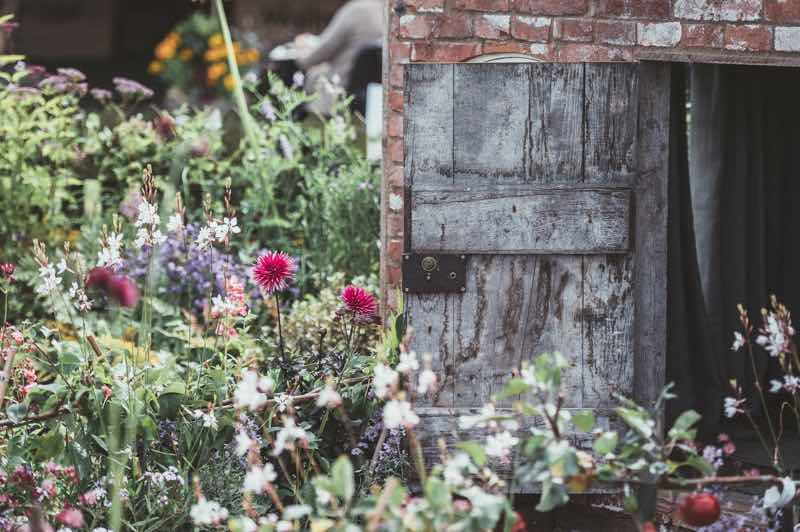 diy garden trends