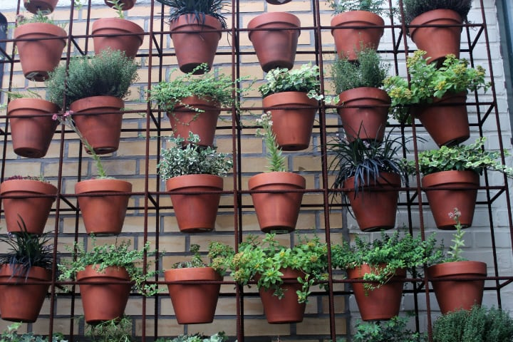 diy wall plantersjpg
